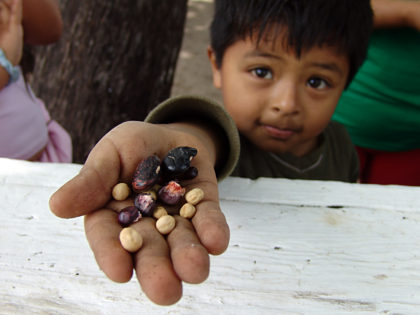 """The son of a farmer holding seeds"" by Jonathan McIntosh - Own work, CC BY-SA 3.0."